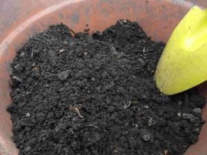 puedes consumir c compost organico